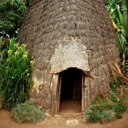 Elephant head hut